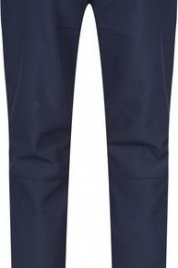 Dámské zateplené kalhoty RWJ177R Womens Fenton - Regatta